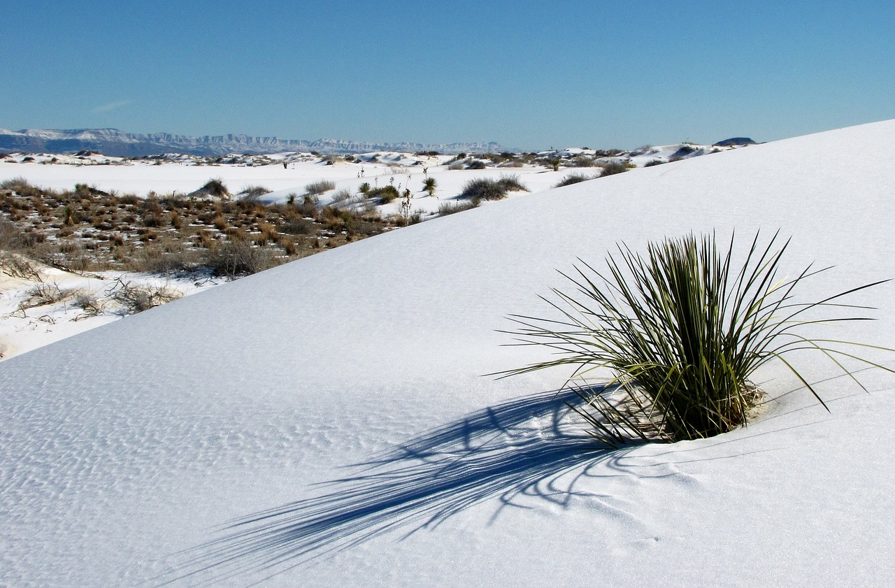 9 Things to do When You Visit White Sands National Monument