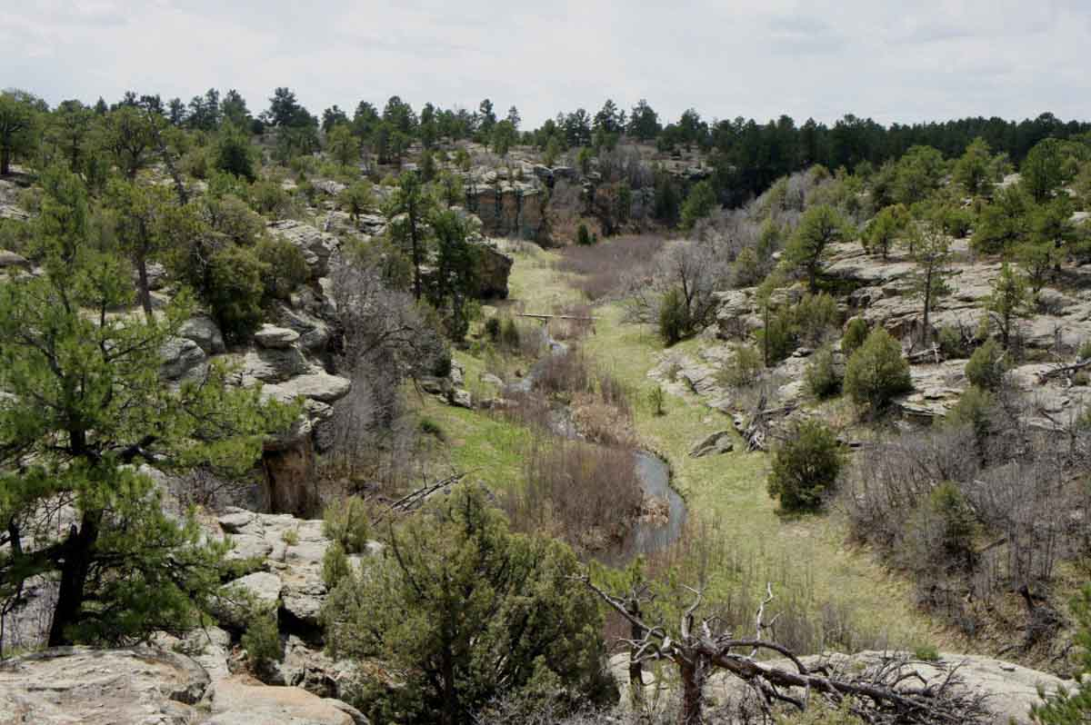 Rimrock Trail near Franktown is one of the most beautiful hikes in Colorado