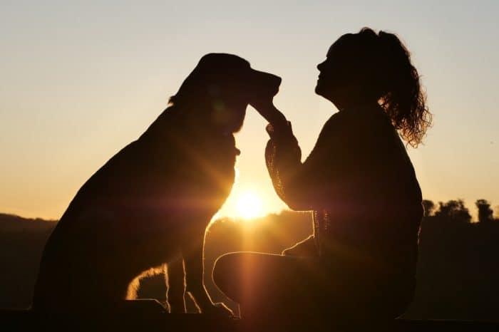 Petiquette 101: Dog Etiquette Rules to Follow When Visiting Public Places with Your Dog