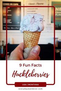 Huckleberries - Pin 4 - JPG