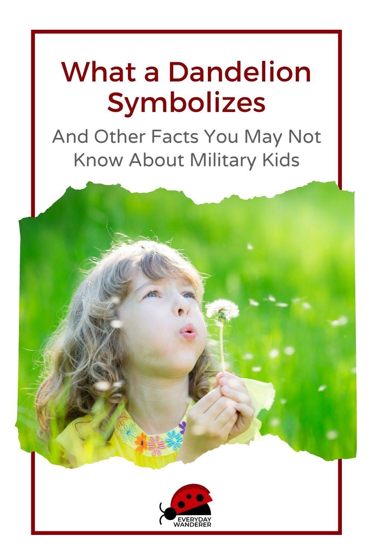 Military Brat Facts - Pin 1 - JPG